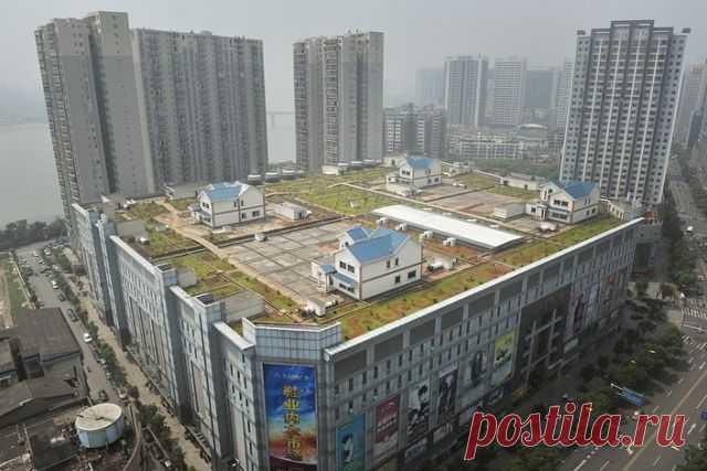 Частный  дом  на  крыше  8 этажного  торгового  центра. Чжу-чжоу, Китай.