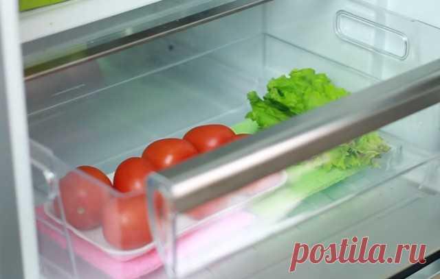 Как продлить жизнь овощам в холодильнике? — Полезные советы