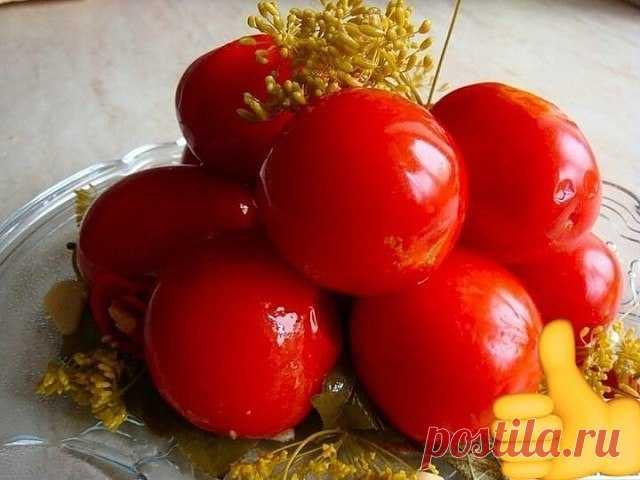Засолка помидоров холодным способом   Почему холодный способ засолки помидоров считается самым правильным? Все просто: при