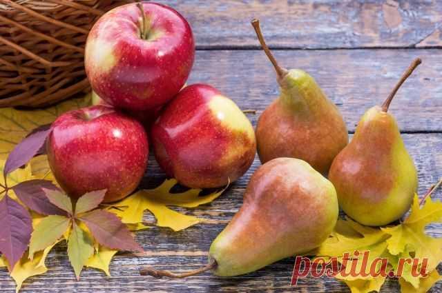 Яблочно-грушевая наливка   Журнал