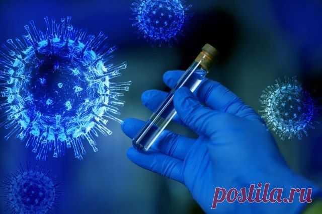 В России выявлен первый случай «британского» штамма коронавируса Новую мутацию вируса нашли у россиянина, вернувшегося из Великобритании.