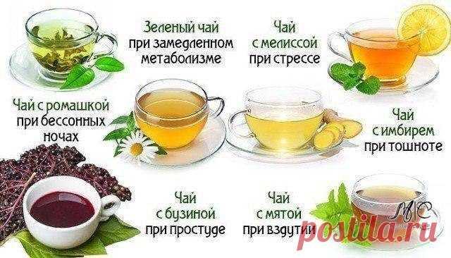 Чай способен на многое! Узнайте, как влияют на организм разные виды этого напитка.