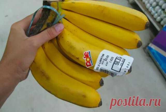 Банан лакатан – почему его игнорируют в России? Первые бананы достигли Европы в XVI веке. Его нарекли «Адамова фига» или... Читай дальше на сайте. Жми подробнее ➡