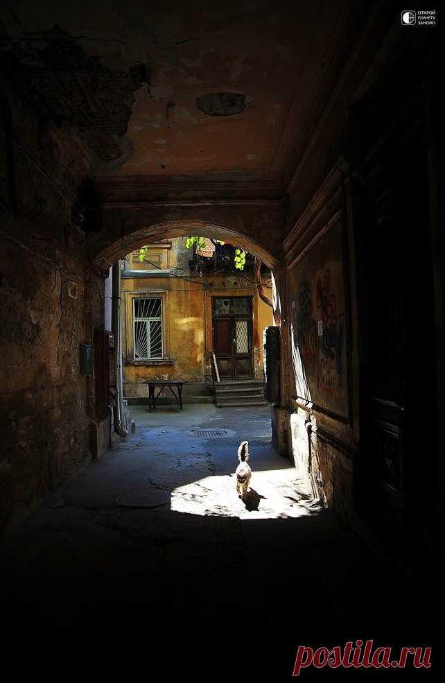 Очарование старых одесских двориков... - Путешествуем вместе