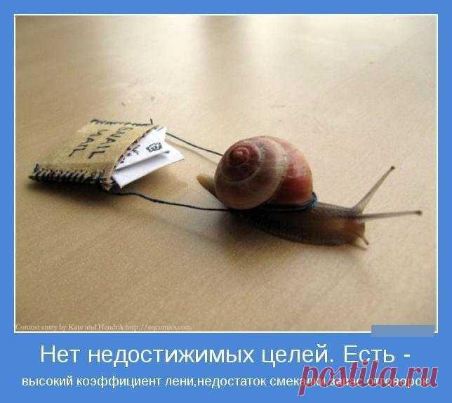 1585393881_15.jpg (644×574)