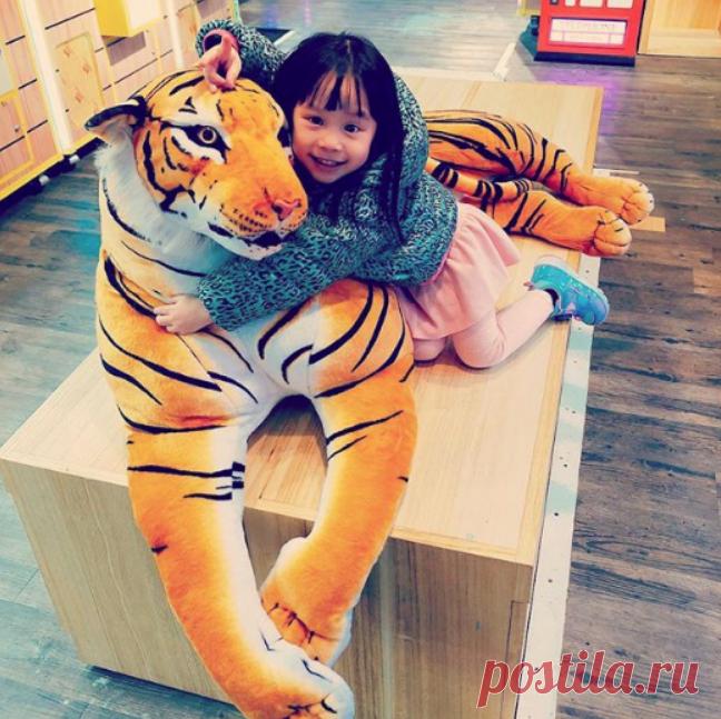 Пять с минусом — плохая оценка: правила воспитания «родителей-тигров» - Статьи - Дети старше 7 лет - Дети Mail.Ru