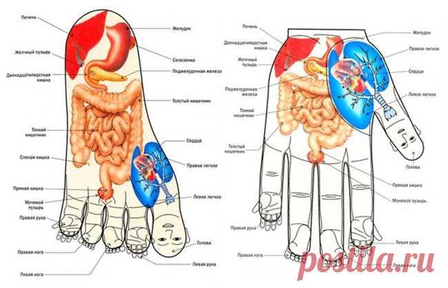 Экспресс-массаж на все случаи жизни. Стимуляция точек на теле творит чудеса!