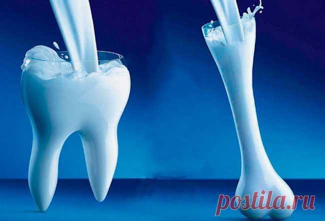 «Жидкая кость» — новое вещество, которое может полностью восстановить поврежденную костную ткань | Наука и жизнь