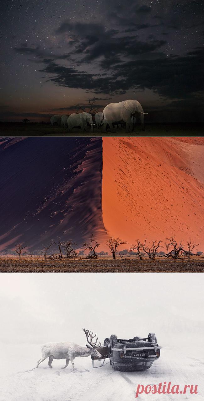 Los mejores trabajos de la fotocompetición Sony World Photography Awards — las Fotoobras maestras