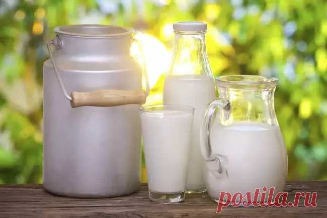 Полезные лакомства из молока в домашних условиях