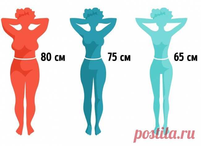 El complejo de los ejercicios en 9 minutos, con que la presión será plana, y el talle delgado