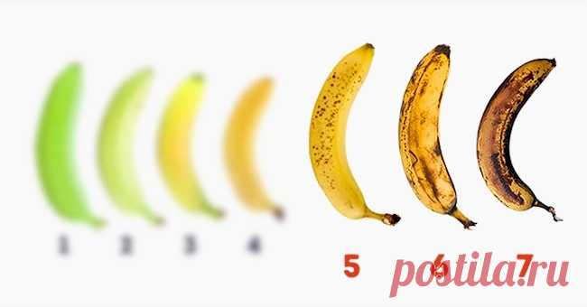 10 properties of banana about which you, most likely, did not know