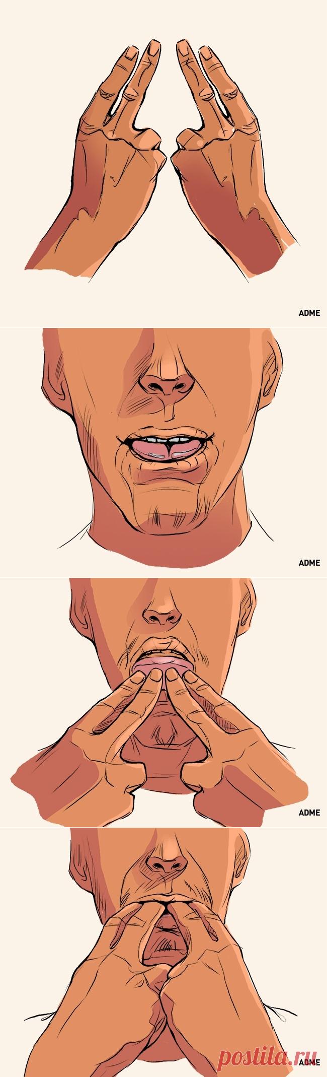 можно картинки как научиться свистеть любила умела тренироваться