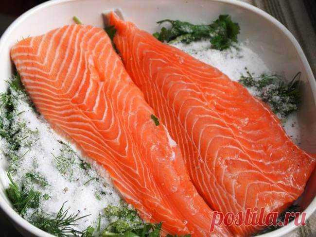 Ресторанная засолка рыбы лососевых пород — Бабушкины секреты