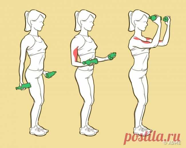 Выполняйте эти 6 упражнений и ваши руки станут красивыми, как у модели