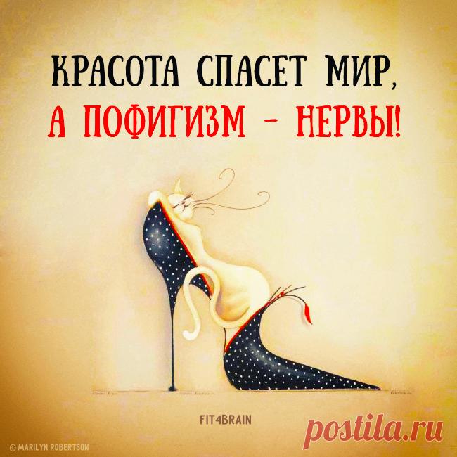 https://img11.postila.ru/resize?w=650&src=%2Fdata%2F8c%2Fc8%2F43%2Fb3%2F8cc843b372c2a6bcfbf647ccd3b2621c0bdb92c9dfc38ea22253a02d40550018.png