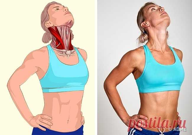 18 images which will demonstrate what muscles you stretch