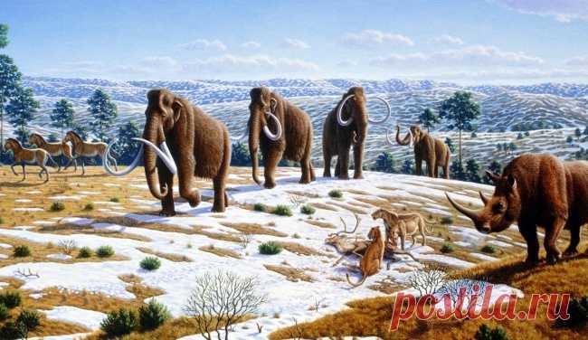 10 научных загадок, которым пока нет объяснения