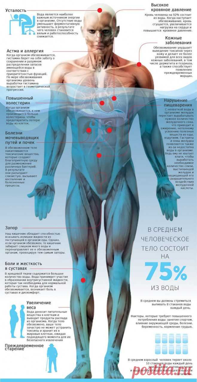 Olga Butakova: Diabetes, atherosclerosis and other diseases of dehydration Quantity and quality of water\u000a\u000a\u000a\u000a\u000a\u000a\u000aWater has two parties - it is quantity and quality.\u000aWhat is quantity? The quantity is when waters comes to an organism insufficiently to make everything …
