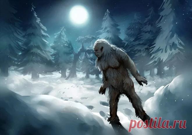 4 самых загадочных существа в истории | VestiNews. Люди, события, факты | Яндекс Дзен