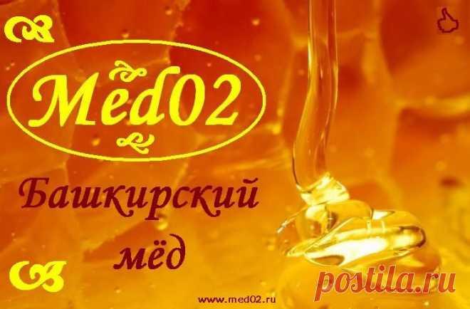 Company Med02