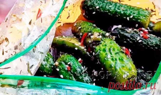 Огурцы малосольные в пакете (рецепты хрустящих огурчиков быстрого приготовления)