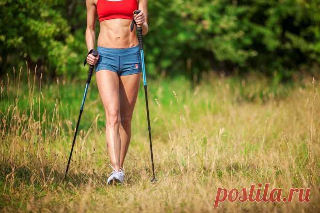 Скандинавская ходьба для похудения. Ходьба с палками - польза для похудения Скандинавская ходьба для похудения. Ходьба с палками - польза для похудения. Можно ли похудеть с помощью скандинавской ходьбы.