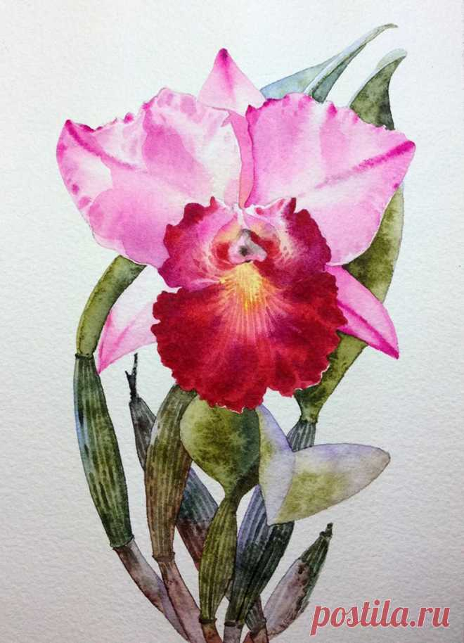 Художник - акварелист Ti Watercolor-Kitipong Maksin (Bangkok-Thailand ): kolybanov — ЖЖ