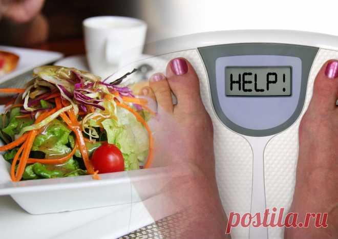 Почему подсчет калорий — неудачная схема для нормализации веса и здоровья. Мы привыкли обращать внимание на калории, чтобы контролировать вес. Сведения о них указаны на этикетках еды и напитков, а гаджеты сообщают, сколько калорий удалось потратить. Разбираемся, почему ученые признали популярную диету устаревшей.