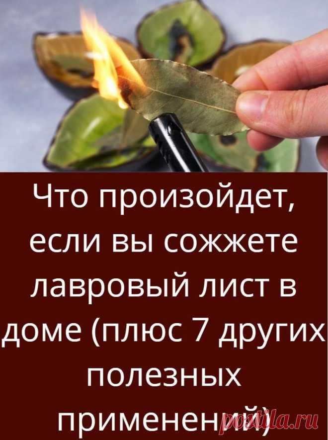 Что произойдет, если вы сожжете лавровый лист в доме (плюс 7 других полезных применений)