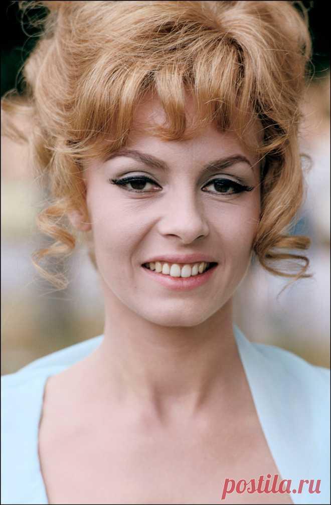 3569abf60a88 90 фото Мишель Мерсье в молодости и сейчас (Анжелика маркиза ангелов ...