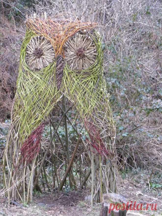 Nice stem owl