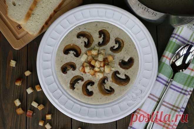 Крем-суп из шампиньонов – Kyxarka.ru