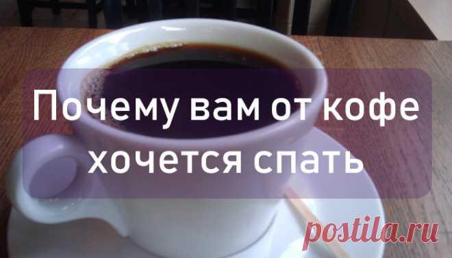 Леди Красота   Почему от кофе хочется спать Зачем мы пьем кофе? Кроме того, чтобы насладиться вкусом этого чудесного напитка и его вариаций? Конечно для того, чтобы получить бодрость и повысить работоспособность! Это работает для большинства…