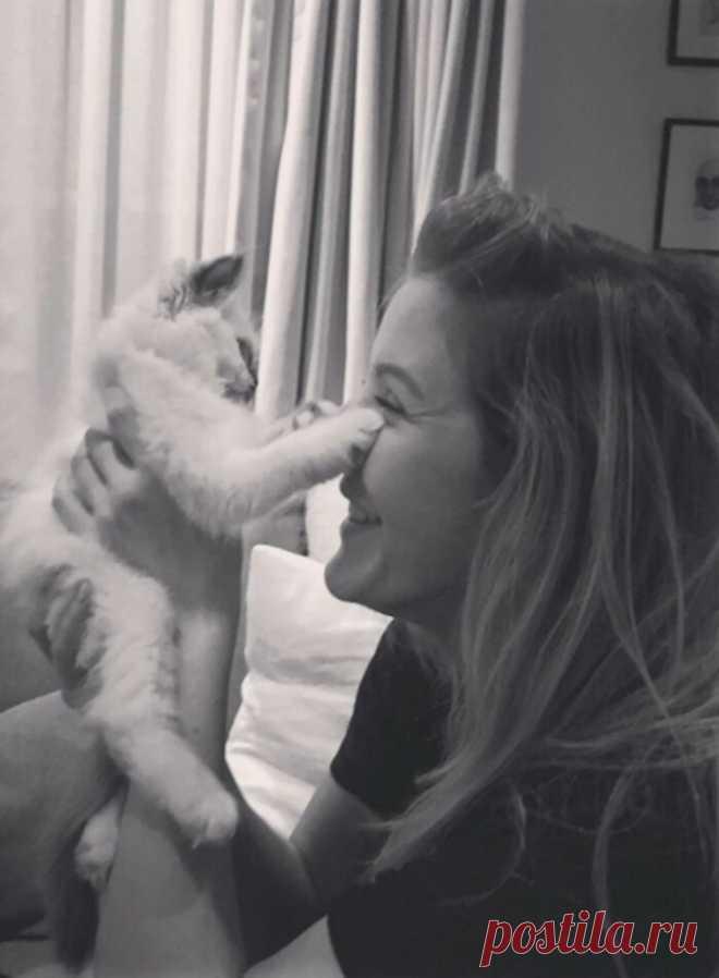 40 знаменитостей, которые обожают кошек. И их очаровательные питомцы