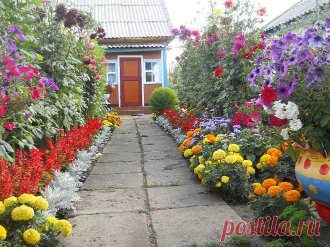 Сады и цветники своими руками