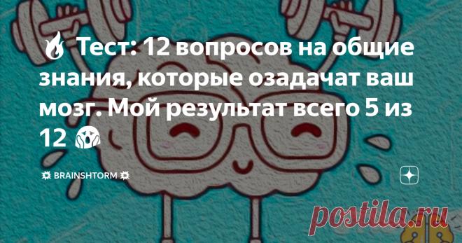 🔥 Тест: 12 вопросов на общие знания, которые озадачат ваш мозг. Мой результат всего 5 из 12 😱