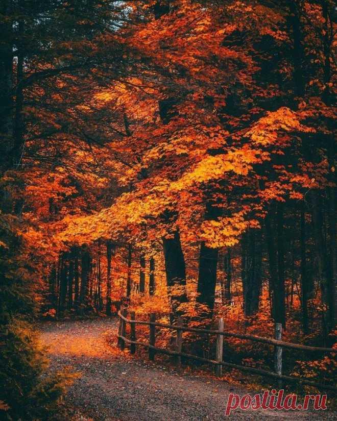 Осень как состояние души