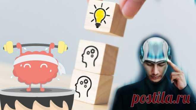 Как заставить наш мозг работать. 14 действенных способов стимуляции работы нашего мозга | В здоровом теле здоровый дух | Яндекс Дзен