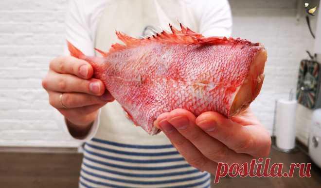 Рецепт рыба «По-польски». Интересный рецепт приготовления рыбы из кулинарной книги 1981 года | MEREL KITCHEN | Пульс Mail.ru Сегодня я хотел бы поделиться с вами интересным и довольно необычным рецептом рыбы