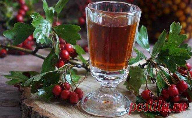 Вино из боярышника - простой рецепт