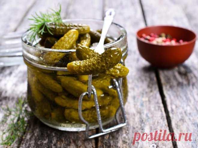 3 рецепта соленых огурцов | Дамский эксперт