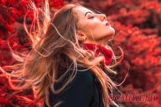 2 эфирных масла, от которых волосы становятся толще и растут гуще   ✧Сама себе косметолог✧   Яндекс Дзен