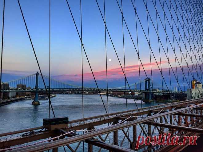 Сколько стоит прожить месяц в Нью-Йорке?. Блоги. Онлайн-гид по Лос-Анджелесу.