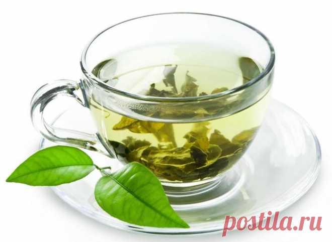 Ученые объясняют, что происходит с вашим телом, когда вы пьете зеленый чай каждый день - Упражнения и похудение Добавьте в рацион! Вероятно, вы слышали, что зеленый чай — один из самых полезных напитков, но знаете ли вы, почему? Что делает этот древний напиток настолько полезным для вашего здоровья и как он влияет на ваше тело при регулярном употреблении? Зеленый чай сначала считался дорогостоящим напитком в древнем Китае, которым пользовались только богатые и королевские …