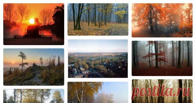 Осенние туманные фотопейзажи