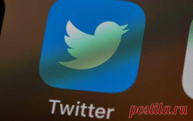Роскомнадзор начал замедлять скорость работы Twitter в России   Журнал Esquire.ru