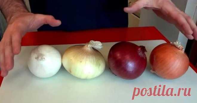Нестандартное применение обычного лука Обыкновенный репчатый лук, который известен каждой хозяйке, может быть применен не только в кулинарии, во время приготовления супа или вторых блюд. Лук — настоящий кладезь для хозяйки! О некоторых хит...