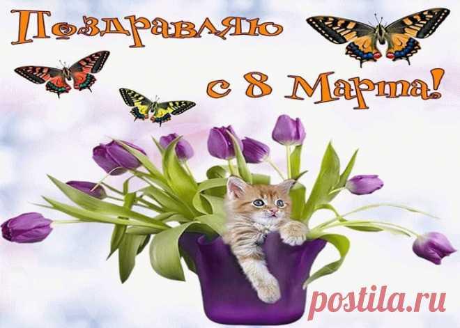 Открытки с 8 Марта! Живые прекрасные картинки и чудесные поздравления для женщин - Александр, 06 марта 2021