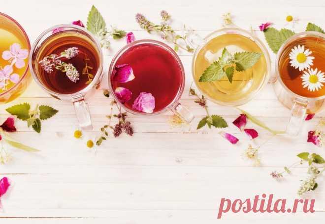 Чай ускоряющий обмен веществ